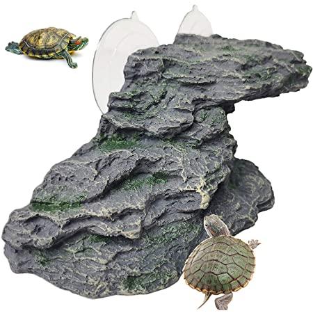 Kathson Turtle Basking Platform