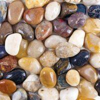 Turtle Tank Pebbles
